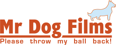 Mr Dog Films logo